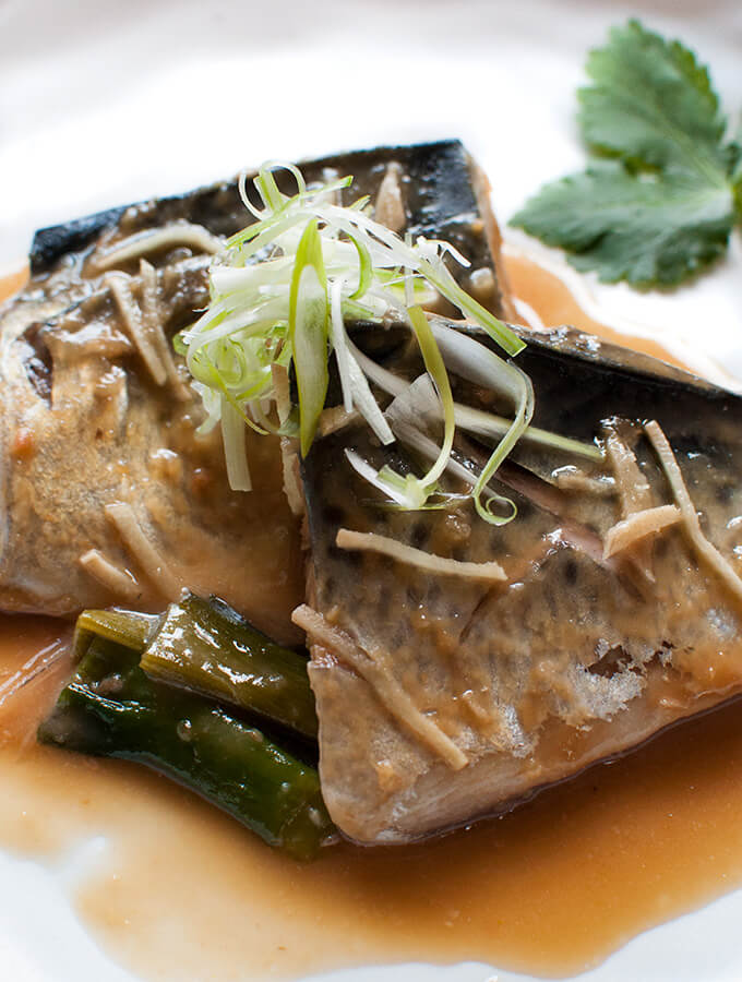 Zoomed in photo of Simmered Mackerel fillets in miso.