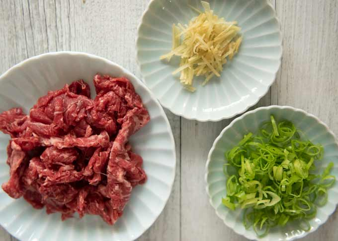 Main ingredients of Beef Udon (Niku Udon).